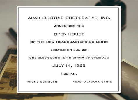 excerpt published for Arab Electric Coop
